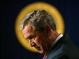 El sacro ectoplasma de maese Bush